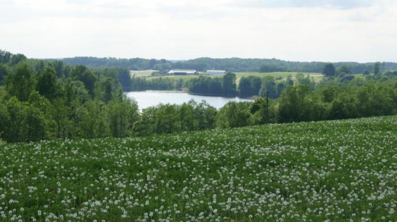 Latvija, Pļavas
