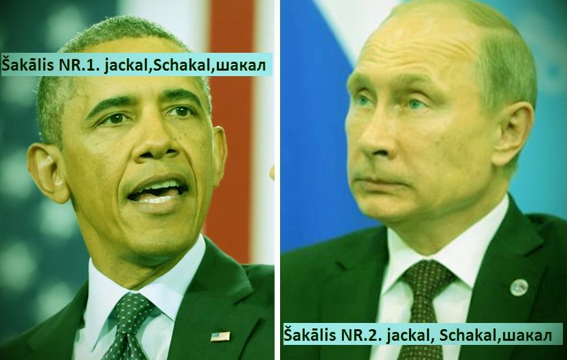 Obama, шакал, Putin, Deutschland. Merkel, LRTT