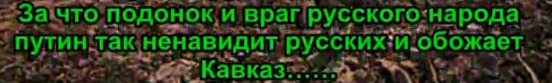 PUtins,kadīrovs,reriniks,krievija